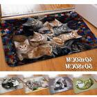 Cute Cat Kitty Carpet Doormat Kitchen Entrance Door Mat Non-